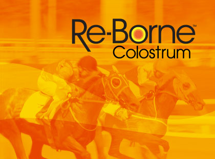 Re-Borne Colostrum online store