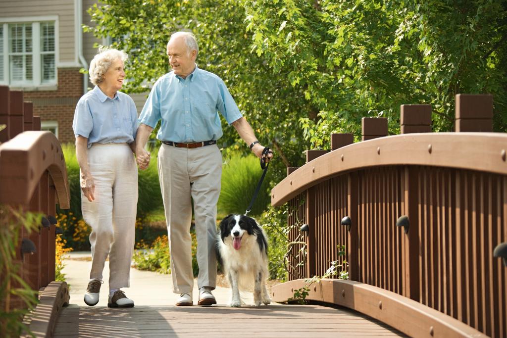 Senior couple walking dog over a bridge.