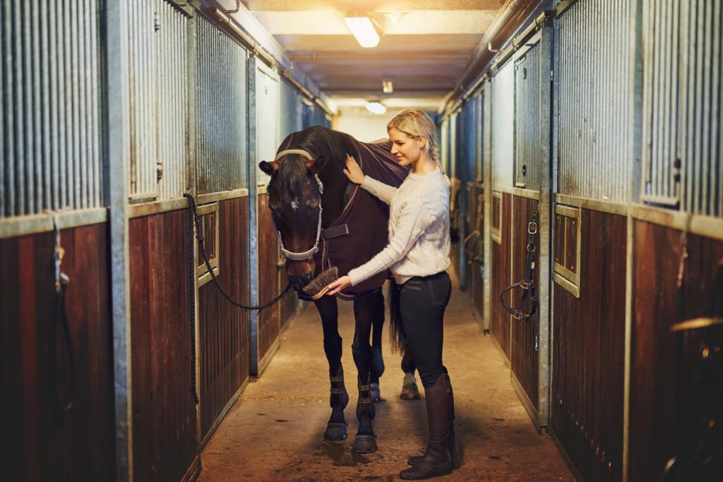 Woman grooming horse in barn.